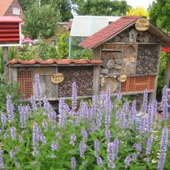 Insektenhotel, Naturschutz